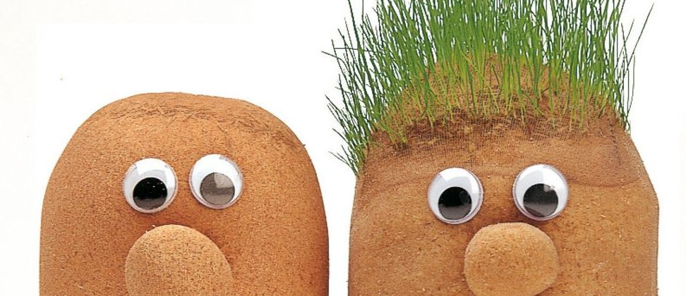 mr-grasshead-grass-grows-can-be-trimmed-248-p